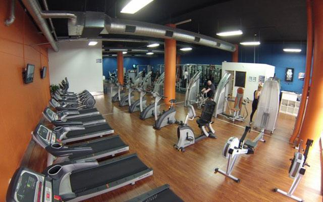 Plus Fitness - 24 Hours Studio - Alexandria